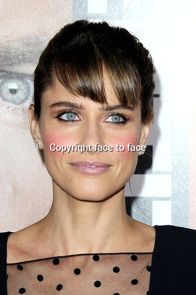 "Amanda Peet at the ""Identity Thief"" film premiere at Mann Village Westwood in Los Angeles, California. February 4, 2013. ..Credit: MediaPunch/face to face..- Germany, Austria, Switzerland, Eastern Europe, Australia, UK, USA, Taiwan, Singapore, China, Malaysia and Thailand rights only -"