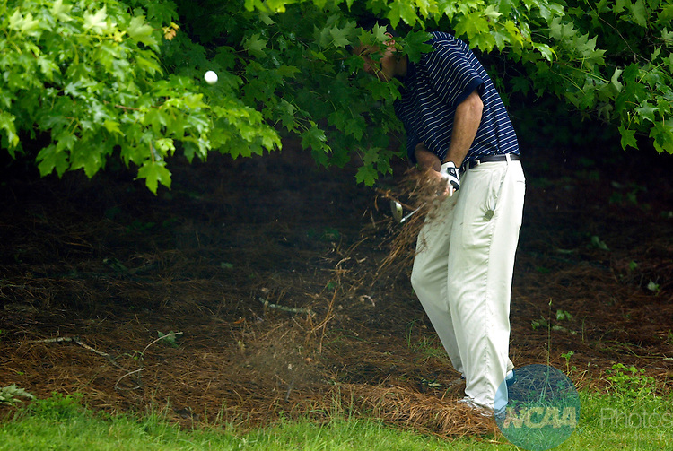 04 JUNE 2004:  John Poucher of UCLA hits out of the rough on the 12th hole during the Men's Division I Golf Championship held at The Cascades at The Homestead Golf Course in Hot Springs, VA.  Poucher Tomasulo tied for 68th place, shooting a +21 score in the four round tournament.  Jamie Schwaberow/NCAA Photos