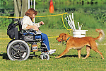 Woman In Wheelchair Playing With Dog