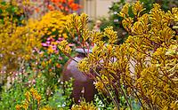 Schneck Garden