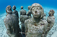 RG40566-D. underwater sculpture garden called The Silent Evolution, made by artist Jason de Caires Taylor. Part of the Museo Subacuatico de Arte, these cement sculptures rest in 25 feet of water off Isla Mujeres and depict real people, including many locals from the Cancun area. Made using special materials which encourage colonization by coral and other marine life. One goal of this installation is to help form an artificial reef which will reduce tourist pressure on nearby natural reefs. Mexico, Gulf of Mexico, Caribbean Sea.<br />