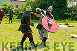 Listowel Military Tattoo: Viking actors taking part in a mock battle during the Listowel Military Tattoo on Sunday Last.