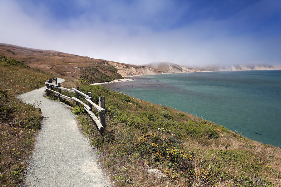Trail to Elephant Seal Overlook, Point Reyes National Seashore, California, USA