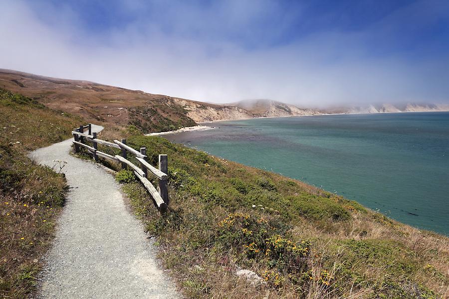 Trail to Elephant Seal Overlook, Point Reyes National Seashore, California, USA