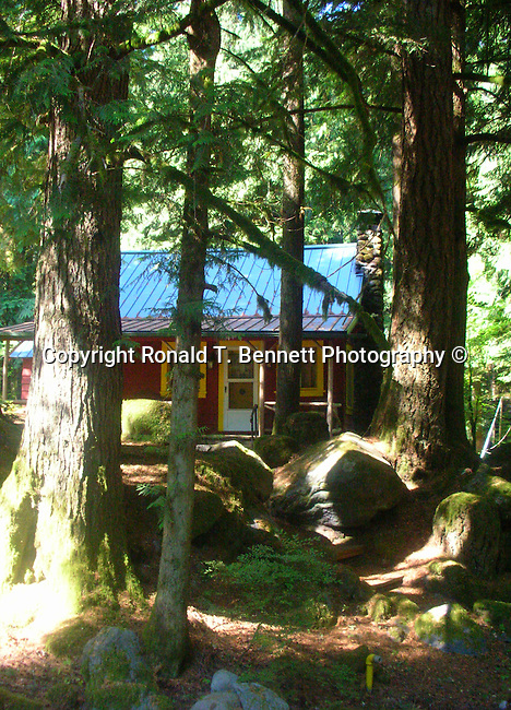 Mount Hood home in Douglas fir forest Oregon, USA, Pacific Ocean, Plains, woods, mountains, rain forest, desert, rain, Rose City, Portland, Lake Oswego, Pacific Northwest, Fine Art Photography by Ron Bennett, Fine Art, Fine Art photography, Art Photography, Copyright RonBennettPhotography.com © Fine Art Photography by Ron Bennett, Fine Art, Fine Art photography, Art Photography, Copyright RonBennettPhotography.com ©