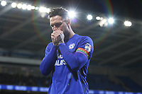 Sean Morrison of Cardiff City wearing his rainbow colour captains armband during the Sky Bet Championship match between Cardiff City and Norwich City at The Cardiff City Stadium, Wales, UK. Friday 01 December 2017
