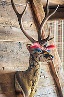 A French tapestry stag above the fireplace in the living room adds a dash of colour and eccentricity to the space