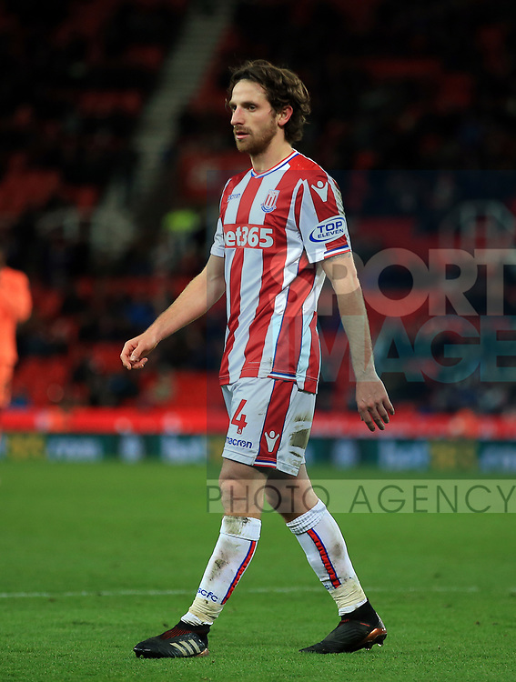 Joe Allen of Stoke City during the premier league match at the bet365 Stadium, Stoke on Trent. Picture date 29th November 2017. Picture credit should read: Clint Hughes/Sportimage