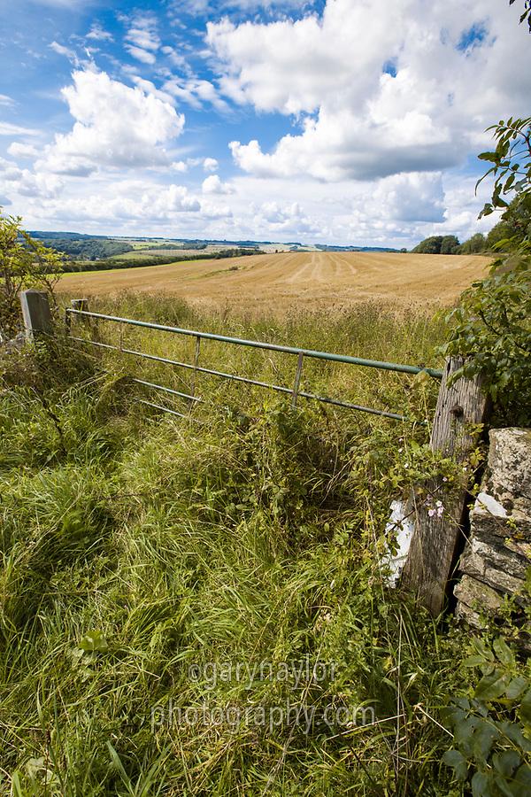 Farm gate leading to harvest stubble field - Gloucestershire, September