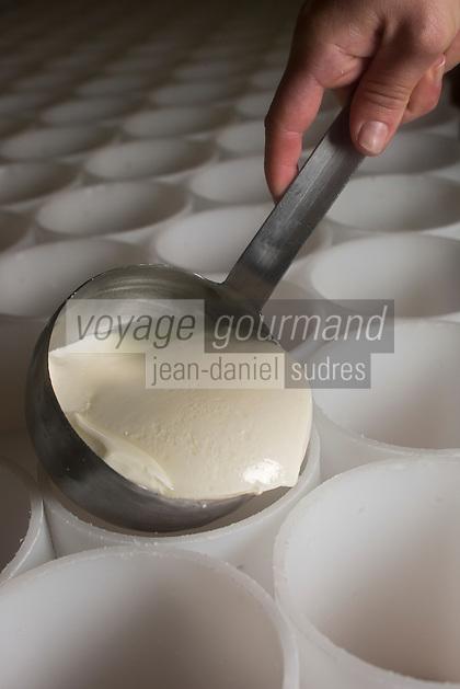 France, Calvados (14), Pays d'Auge, Saint-Loup-de-Fribois, Fromagerie du Domaine de Saint Loup, Camembert au lait cru moulé à la louche de la fromagerie du village, moulage manuel à la louche // France, Calvados, Pays d'Auge, Saint Loup de Fribois, raw milk camembert to cast the ladle of the cheese of the village, the manual casting ladle - Cheesery:  Domaine de Saint Loup