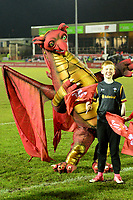 The Wales mascot looks on<br /> <br /> Photographer Richard Martin-Roberts/CameraSport<br /> <br /> Six Nations U20 Championship Round 4 - Wales U20s v Italy U20s - Friday 9th March 2018 - Parc Eirias, Colwyn Bay, North Wales<br /> <br /> World Copyright &not;&copy; 2018 CameraSport. All rights reserved. 43 Linden Ave. Countesthorpe. Leicester. England. LE8 5PG - Tel: +44 (0) 116 277 4147 - admin@camerasport.com - www.camerasport.com