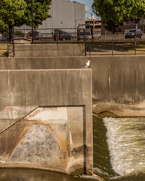 August 5, 2016. Flint, Michigan.<br />  The Flint River cuts right down the center of downtown Flint. <br />  In April 2014, the city of Flint switched its water source from the Detroit Water and Sewerage Department to using the Flint River in an effort to save money. When the switch occurred, the city failed to have corrosion control treatment in place for the new water. This brought about a leaching of lead from pipes into the water, increasing the lead content in the drinking water to levels far above legal limits. After independent sources brought this to light, the city admitted the water was unsafe and legal battles have ensued between resident and the local and state governments.