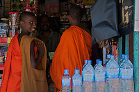 Buddhist Monks in a small town near Kandy,  Sri Lanka