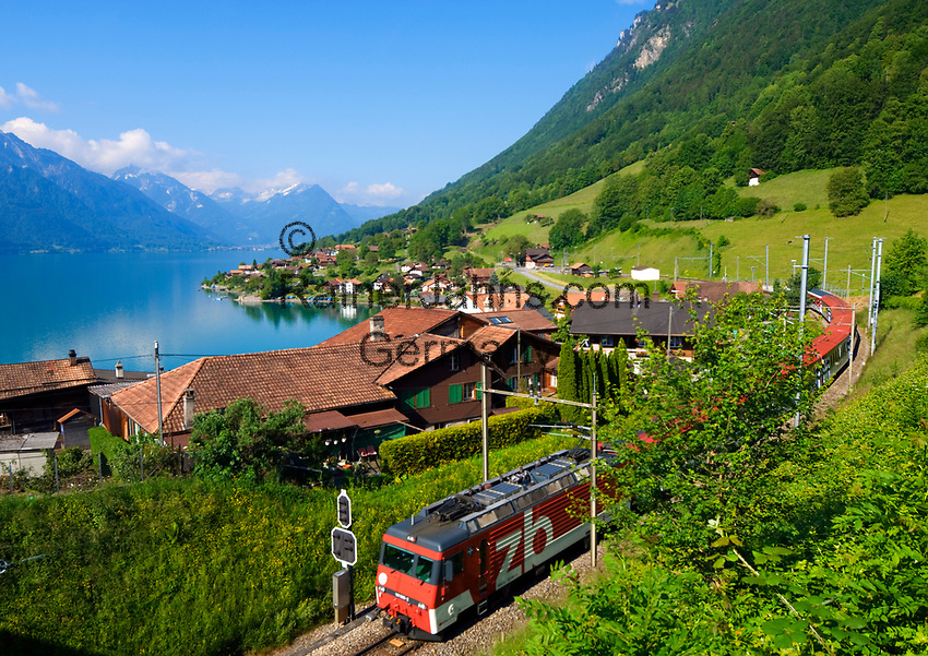 CHE, SCHWEIZ, Kanton Bern, Berner Oberland, Oberried am Brienzersee: gut zu erreichen mit der Schweizer Zentralbahn | CHE, Switzerland, Bern Canton, Bernese Oberland, Oberried at Lake Brienz: Central Railway