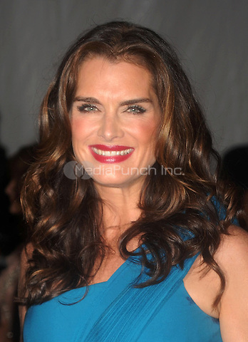 Brooke Shields at 'The Model as Muse: Embodying Fashion' Costume Institute Gala at The Metropolitan Museum of Art in New York City. May 4, 2009. Credit: Dennis Van Tine/MediaPunch