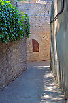 Girona Temps de Flors.<br /> 62a Exposicio de Flors, Monuments, Patis i Jardins.<br /> L'Eixamble Medieval.