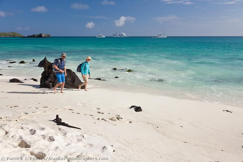 Tourists view marine iguanas on Gardner beach, Espanola Island, Galapagos Islands, Ecuador.