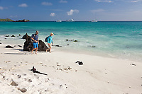 Tourists view marine iguanas on Gardner beach, Espanola Island, Galapagos Islands, Ecuador.