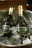 An ice bucket with ice and water and two bottles of sparkling champagne type wine Bodega winery Norton Extra Brut Cosecha Especial, Mendoza The Rosa Negra Restaurant, The Black Rose, Buenos Aires Argentina, South America