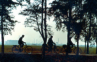 Workers silhouetted cicycling through the Canton countryside. Pictures taken in Canton China in 1977 at the time of the cultural revolution.