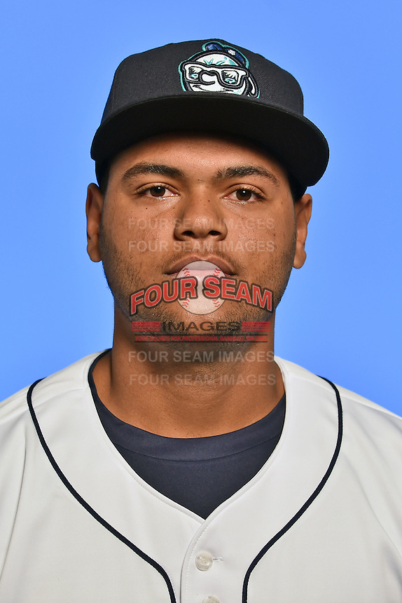 Asheville Tourists catcher Hamlet Marte (14) poses for a photo at Story Point Media on April 5, 2016 in Asheville, North Carolina. (Tony Farlow/Four Seam Images)