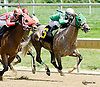 Malice winning at Delaware Park on 8/18/14