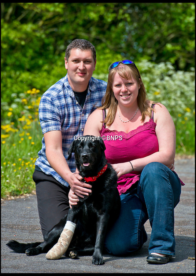 BNPS.co.uk (01202 558833)<br /> Pic: RachelAdams/BNPS<br /> <br /> Dog Pippa, owners Katie and Daniel <br /> <br /> Pippa the dog had a miracle escape after she plunged off a 100ft cliff and survived by landing in the sea below.<br /> <br /> The black labrador was being taken for a walk when she suddenly became excited at seeing the sea in the distance.<br /> <br /> She ran off from owners Daniel and Katy Pordage, dashed 500 yards across two fields towards the edge of the cliff without realising the danger.<br /> <br /> Incredibly, Pippa landed in the an area of water between two rocks 100ft below and suffered just an injured front paw in the death-defying fall.<br /> <br /> Two climbers who were abseiling down to scale the cliff at Anvil Point, near Swanage, Dorset, plucked the dog out of the water and held on to her until a lifeboat crew arrived.<br /> <br /> Pippa was taken aboard and ferried to the lifeboat station where she was reunited with her relieved owners.<br /> <br /> Katy, a 27-year-old vetinery nuse, looked at the three-year-old pooch and thought she had broken her front right leg but a further examination revealed just a damaged tendon.<br /> <br /> Katy and Daniel, a 32-year-old web designer from Hythe, near Southampton, were enjoying a break on the Isle of Purbeck with their dogs, Pippa and Marley.