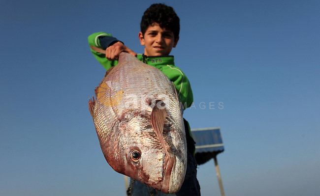 A Palestinian boy displays fish for sale, in Gaza seaport, on April 4, 2016. Israel on Sunday extended the distance it permits Gaza fishermen to head out to sea along certain parts of the coastline of the enclave, which is run by the Islamist group Hamas. The fishing zone was expanded from six nautical miles (11 km) to nine (16 km) along Gaza's central and southern shores, a step that Israeli authorities said should result in a bigger catch in deeper waters, where fish are more abundant. Photo by Ashraf Amra