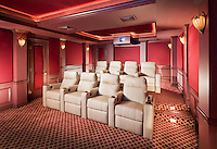 Tiered Leather Theater Seating