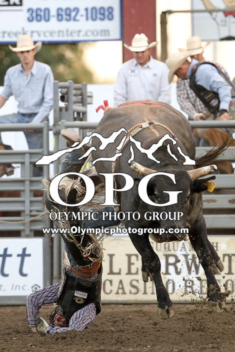 21 Aug 2013:  Joe Meling was not able to score in the second round of competition of the Extreme Bulls Wednesday at the Kitsap County Fair and Stampede Rodeo in Bremerton, Washington.
