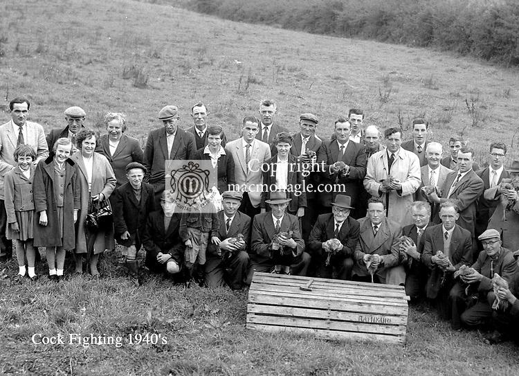 Cock fighting near Killarney in the 1940's..Photo Daniel MacMonagle