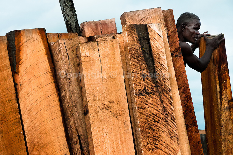 A Colombian worker pushes a timber from the Pacific rainforest at a sawmill in Tumaco, Colombia, 17 June 2010. Tens of sawmills located on the banks of the Pacific jungle rivers generate almost half of the Colombia's wood production. The wood species processed here (sajo, machare, roble, guabo, cargadero y pacora) are mostly used in the construction industry and the paper production. Although the Pacific lush rainforest in Colombia is one of the most biodiverse area of the world, the region suffers an extensive deforestation due to the uncontrolled logging in the last years.
