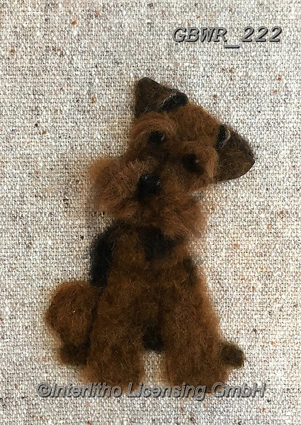 Simon, REALISTIC ANIMALS, REALISTISCHE TIERE, ANIMALES REALISTICOS, innovative, paintings+++++SharonS_WelshTerrier,GBWR222,#a#, EVERYDAY dogs,breeds of dog,