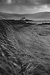 Samphire Lighthouse, taken from Barrow beach on Fenit Island, Fenit, Co. Kerry