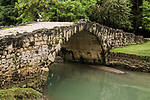A Great Egret perches on the Puente del Rey, the King's Bridge, built between 1619 and 1634.  It is probably the oldest standing bridge in the Americas.  Ruins of Panama Viejo, Old Panama.  Founded in 1519, and destroyed by Henry Morgan, the pirate, in 1671.  A UNESCO World Heritage Site.
