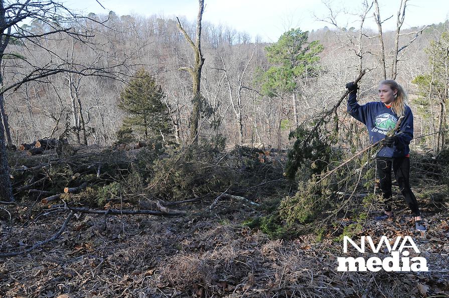 NWA Democrat-Gazette/FLIP PUTTHOFF <br /> Falysha Dibasilio (cq), a Rogers Heritage High School students, helps scatter cut cedars Feb. 18 2017 during glade restoration work.