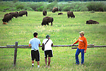 Tourists watch a herd of bison from a distance in Yellowstone National Park.