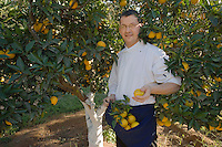 Afrique/Afrique du Nord/Maroc/Rabat: Hotel - Maison d'Hote Villa Mandarine - le chef Christophe Vauthier cueille des oranges dans l'orangeraie du parc
