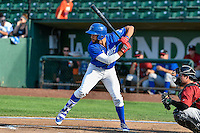 Jared Walker (41) of the Ogden Raptors at bat against the Idaho Falls Chukars in Pioneer League action at Lindquist Field on September 3, 2016 in Ogden, Utah. The Chukars defeated the Raptors 3-0. (Stephen Smith/Four Seam Images)