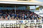 Crowds at Listowel Races on Sunday last.