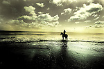 A figure sitting on a horse in the sea