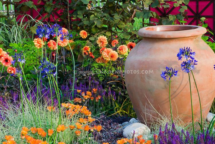 Orange And Purple Garden Color Theme Plant Flower