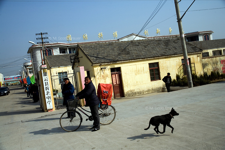 A dog runs along the street outside Yibei Middle School in Yibei Township, Guanyun County, Jiangsu Province, China.  The Pfrang Association, a German charity based in Nanjing, China, sponsors a number of children in the school, providing money for boarding, food, clothing, school supplies, and other necessities to continue schooling.  The majority of children at this school come from poor farming families in rural Jiangsu Province, China.