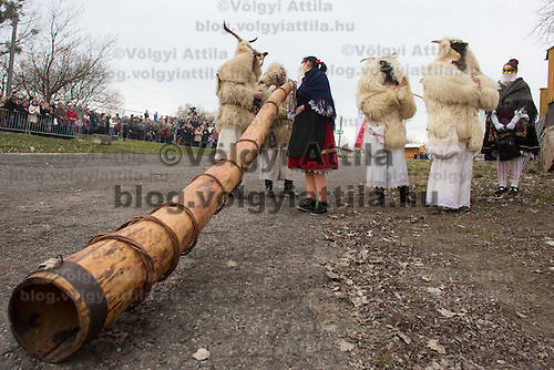 Local people in traditional buso dresses blow wooden horns as they celebrate the Buso Carnival in Mohacs (about 200 km South from capital city Budapest), Hungary on February 07, 2016. ATTILA VOLGYI