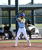 Menelik Israel takes part in the 2020 Under Armour Pre-Season All-America Tournament at the Chicago Cubs training complex and Red Mountain baseball complex on January 18-19, 2020 in Mesa, Arizona (Bill Mitchell)