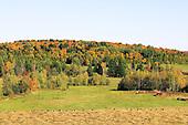 Farm fields in fall
