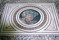 Custom Roman African Bacchus wine cellar floor.