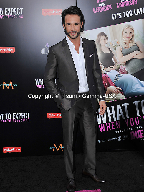 Rodrigo Santoro at The What to Expect when you Expect Premiere at the Chinese Theatre In Los Angeles.