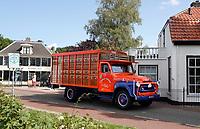 Nederland  Stichtse Vecht - Augustus 2018. Oldtimer veevervoer.    Foto Berlinda van Dam / Hollandse Hoogte