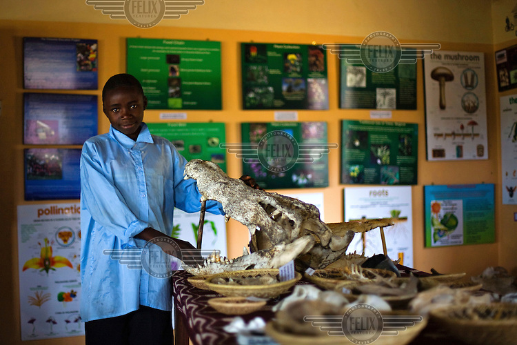 """14 year old Nickson Mwansa from Chalilo school in Sereje district, with his favourite object in the display at Kasanka Mational Park - a crocodile skull. This was his first safari experience. """"I liked to learn the structure of the crocodile, and was also happy to see the size of the tusks of an elephant; they were much bigger than I expected them to be."""" Local schools and women's groups are regularly brought into Kasanka, which is unique in the country and unusual in Africa as it is privately managed and owned by a trust. People are able to see animals flourishing in land which was once free reign for poachers. Combined with anti-poaching scouts, the education programme is on the frontline of conservation methods in the park, showing local people wild animals in their natural habitat."""